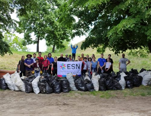 Erasmus Alumni Help to Clean Up the Petrovaradin Fortress