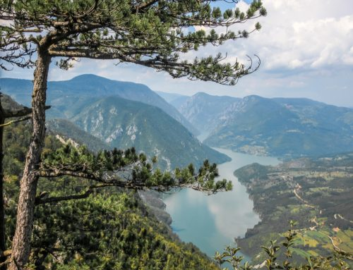 Natura 2000 – Plans for Conserving Nature